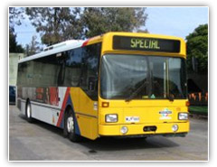 Adelaide's 650 Metro buses